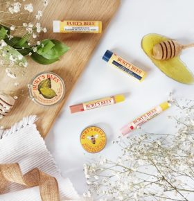 First Impressions Burt's Bees